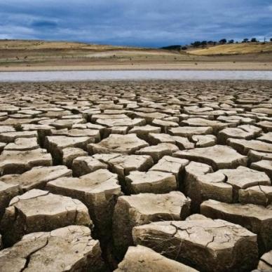 Italia a secco, 2 miliardi di danni per agricoltura