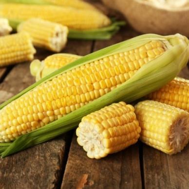 Usda, stabili i prezzi di soia e mais