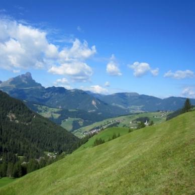 Sostegno all'agricoltura nelle aree montane